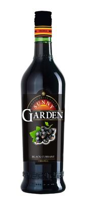Sunny Garden Black Currant